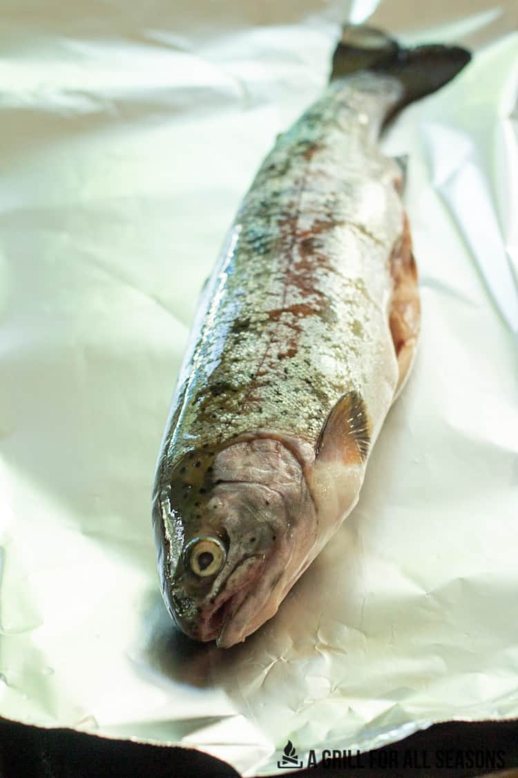 raw whole trout
