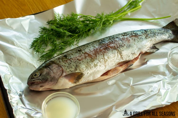 raw whole trout along side dill, salt and lemon juice.